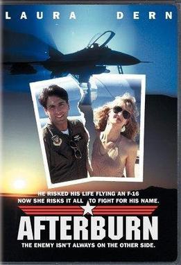 Afterburn film  Wikipedia