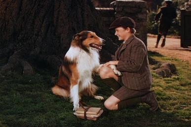 File:<b>Lassie</b> <b>and Joe</b>.JPG - Wikipedia, the free encyclopedia