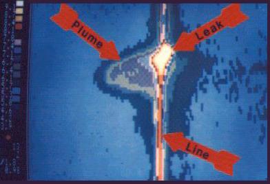 Signal Leakage Detector