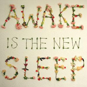 Awake is the New Sleep (2005)