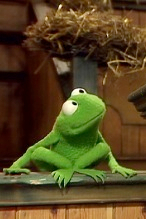 Small White Girl On Couch Meme Template : small, white, couch, template, Muppets, Wikipedia