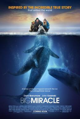 File:Big Miracle Poster.jpg