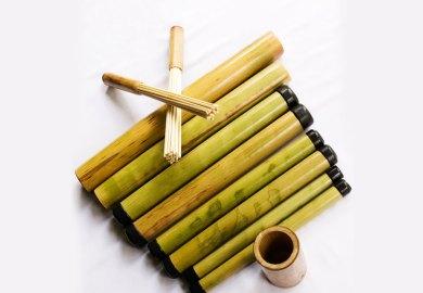 Bamboo Wikipedia The Free Encyclopedia