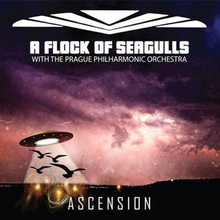 Ascension A Flock Of Seagulls Album Wikipedia