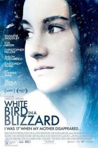 Poster for 2015 mystery thriller White Bird in a Blizzard