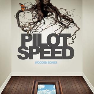 Pilot Wings - Wooden Bones