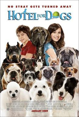 What Nick Star Has A Dog Named Henry : named, henry, Hotel, (film), Wikipedia