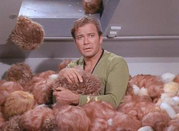 Image result for tribbles