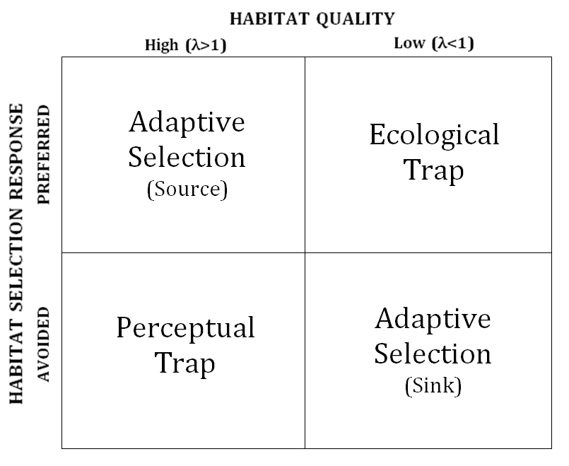Perceptual trap  Wikipedia