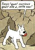 Snowy (character)  Wikipedia