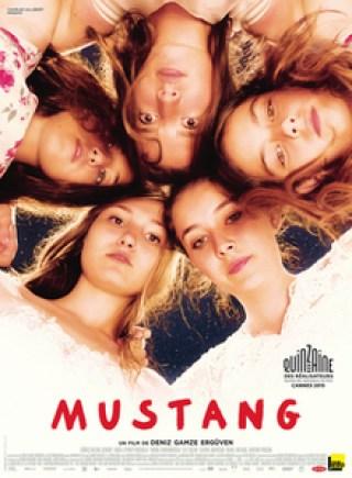 Mustang poster Filmy, które warto obejrzeć jesienią!