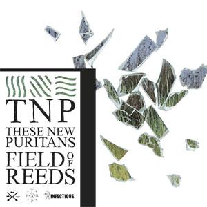 https://i0.wp.com/upload.wikimedia.org/wikipedia/en/5/5c/Field_of_Reeds.jpg
