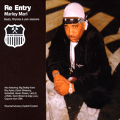 Re-Entry (Marley Marl album)