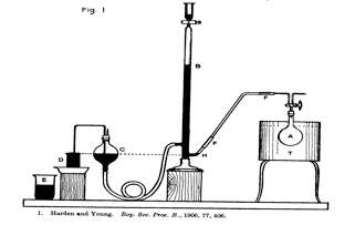 File:Apparatus for Collecting and Measuring the Gases
