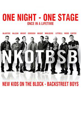 NKOTBSB Tour