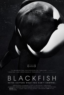 Blackfish film poster
