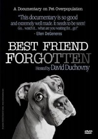 Best Friend Forgotten