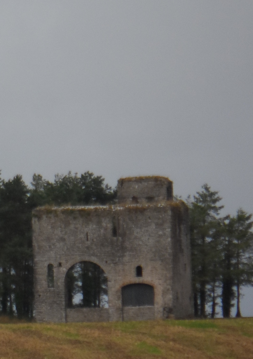 Rathcoffey Castle  Wikipedia