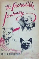 The hardcover version of The Incredible Journey