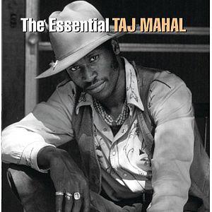 The Essential Taj Mahal Wikipedia