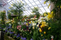 File:Smith botanic garden greenhouse.JPG - Wikipedia