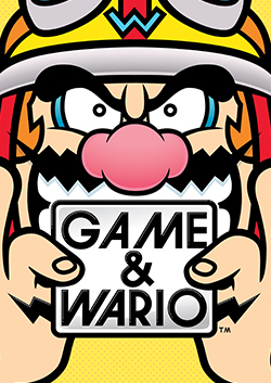 Image result for game and wario