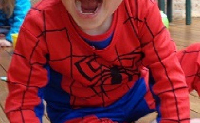 Disappearance Of William Tyrrell Wikipedia