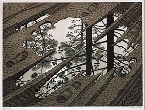 Puddle (M. C. Escher)