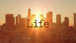 Life (NBC TV series)