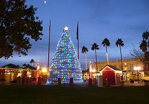 Tumbleweed Christmas Tree in Chandler, Arizona