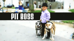Pit Boss (TV series)