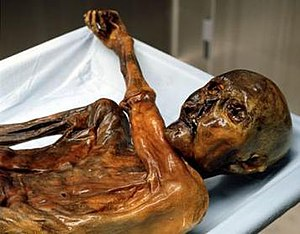 Image result for images of the iceman