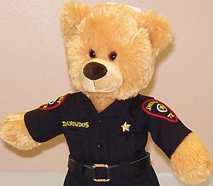 Dressed up teddy bear