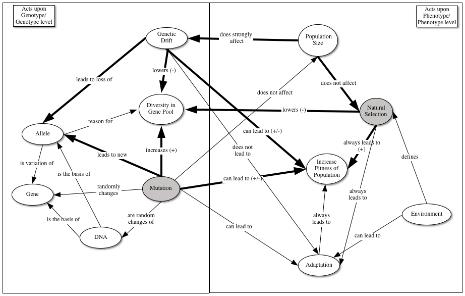 Proto-Knowledge: Comparing two forms of concept map