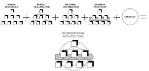 Simplified scheme of an organization