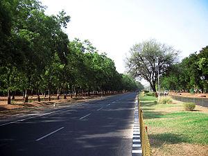Nature's Roads