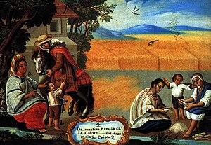 De mestizo e india, sale coiote (From a Mestiz...