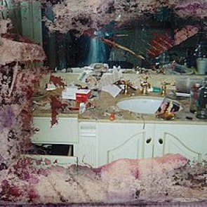 Image result for pusha T daytona