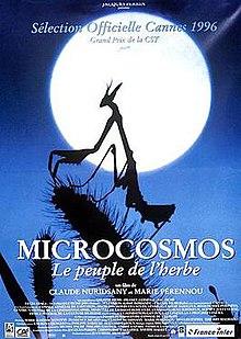 Microcosmos Le Peuple De L Herbe : microcosmos, peuple, herbe, Microcosmos, (film), Wikipedia