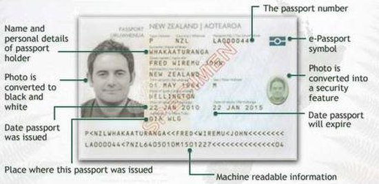 Personal Security License New Zealand