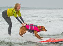 Ricochet surfing with Jo.jpg