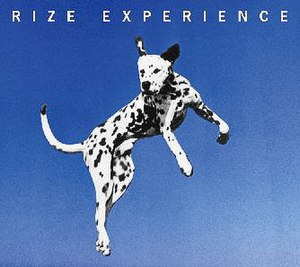 Experience (Rize album)