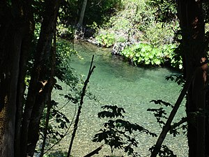 A Swimming Hole in Indian Creek near Happy Cam...