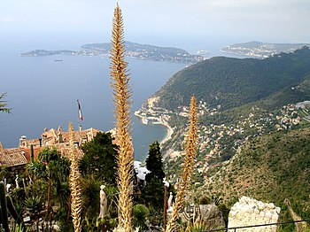 Eze view from garden