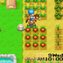 Harvest Moon Friends Of Mineral Town Wikipedia