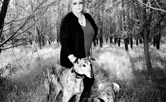 Judy Dyble Wikipedia
