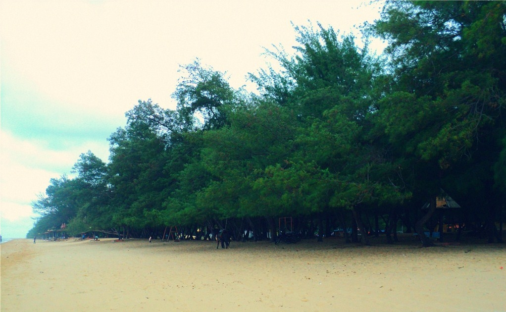 Pantai Lombang  Wikipedia bahasa Indonesia ensiklopedia