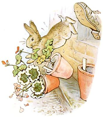 https://i0.wp.com/upload.wikimedia.org/wikisource/en/thumb/e/eb/PeterRabbit18.jpg/350px-PeterRabbit18.jpg