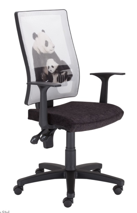 Junior Office Chairs  Endangered Species  Online Reality