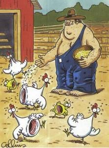 fazendeiro